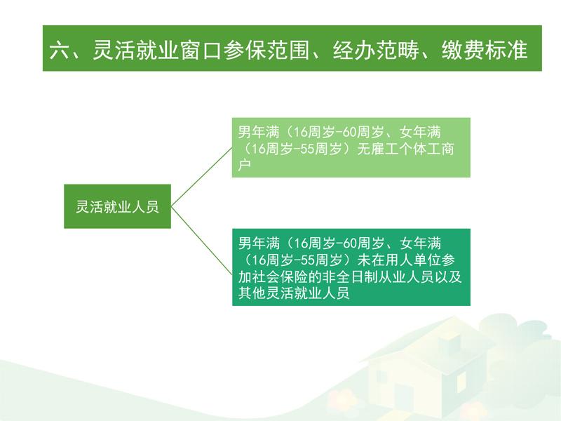 武汉市社会保险参保登记政策与经办流程(2019年版)
