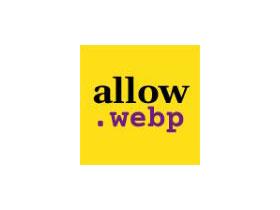 Allow Webp image(高级视图):WordPress插件